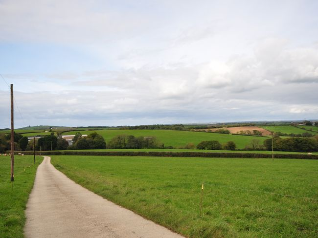 Country lane leading to farm cottage