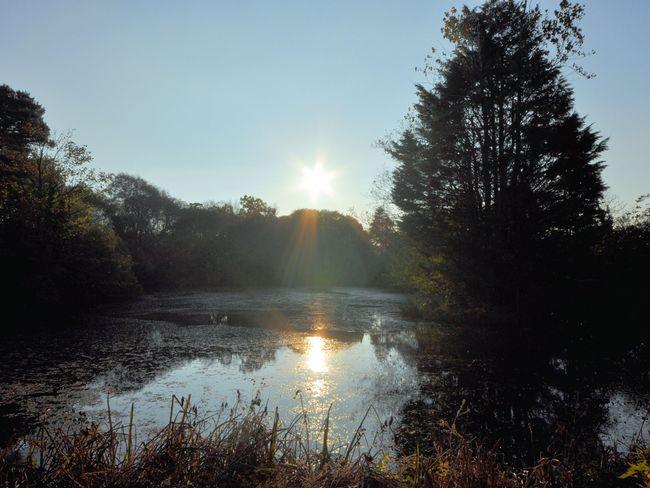 Lake on site