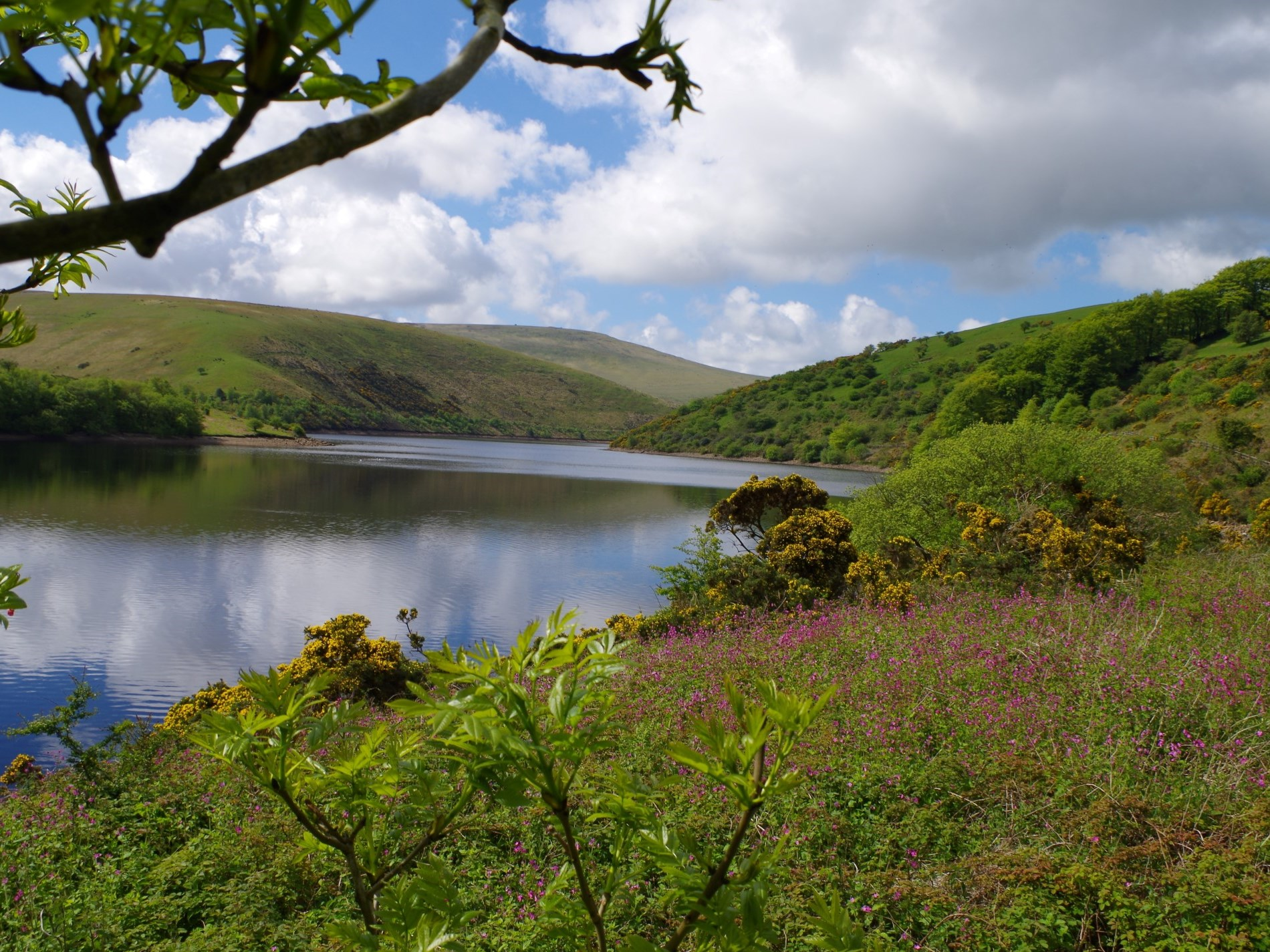 Beautiful lake nearby