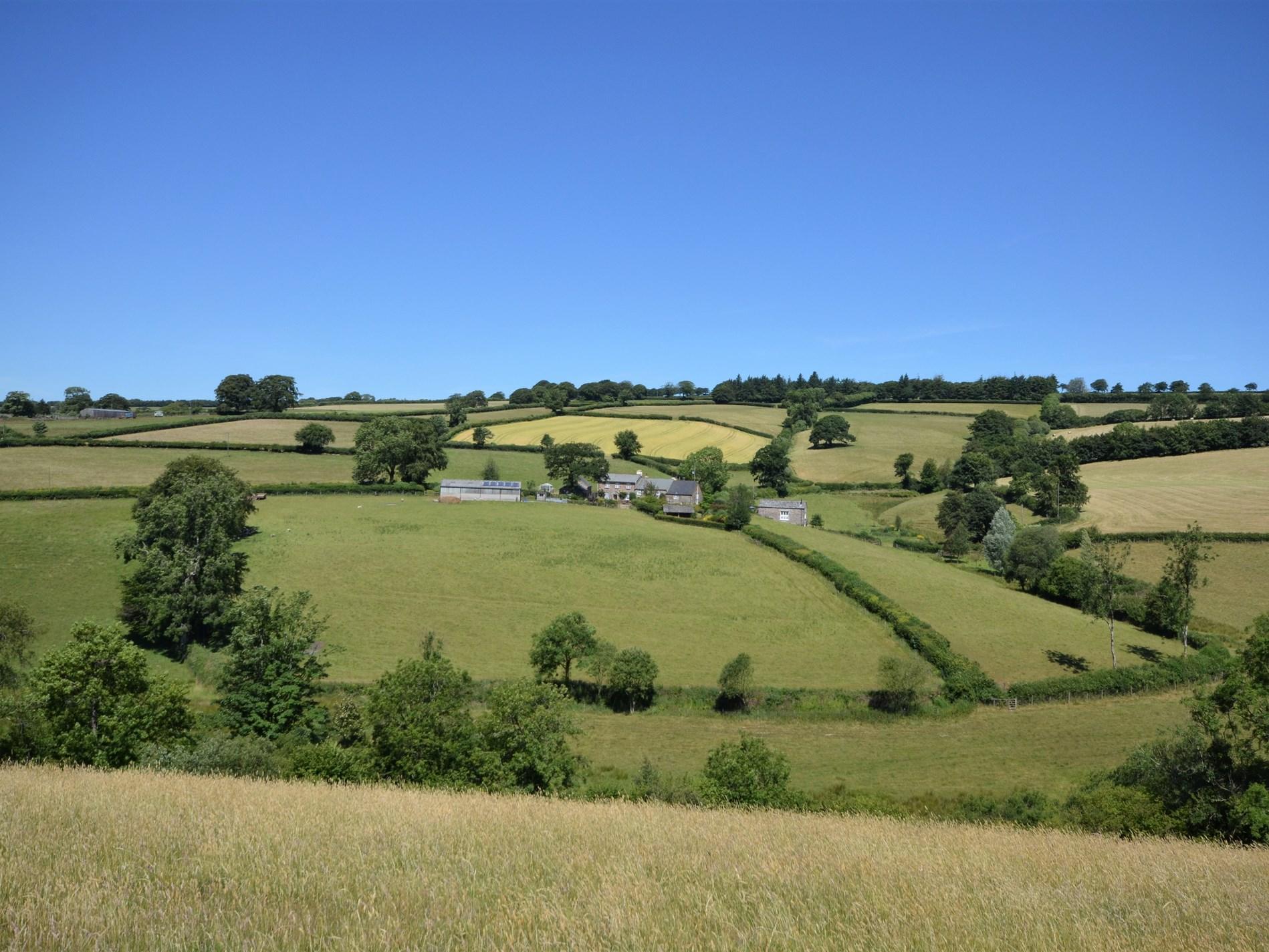 View towards this fantastic farm