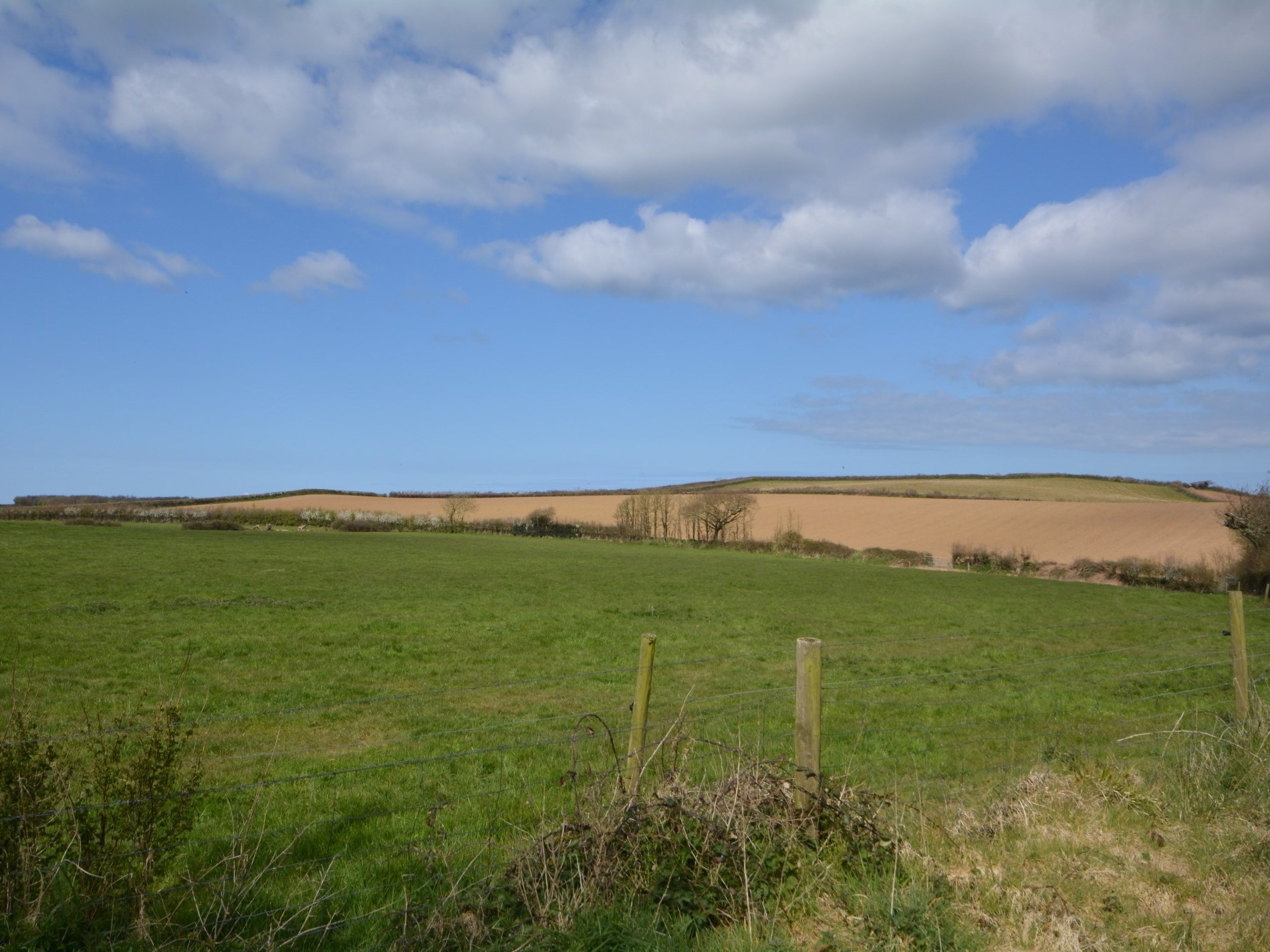 3 Bedroom Cottage in North Cornwall, Cornwall