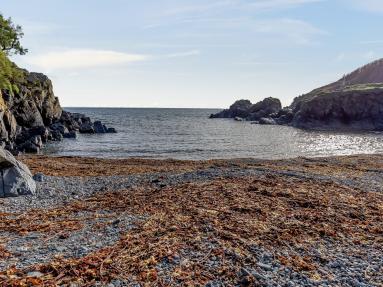 Tea By The Sea (TEABS)