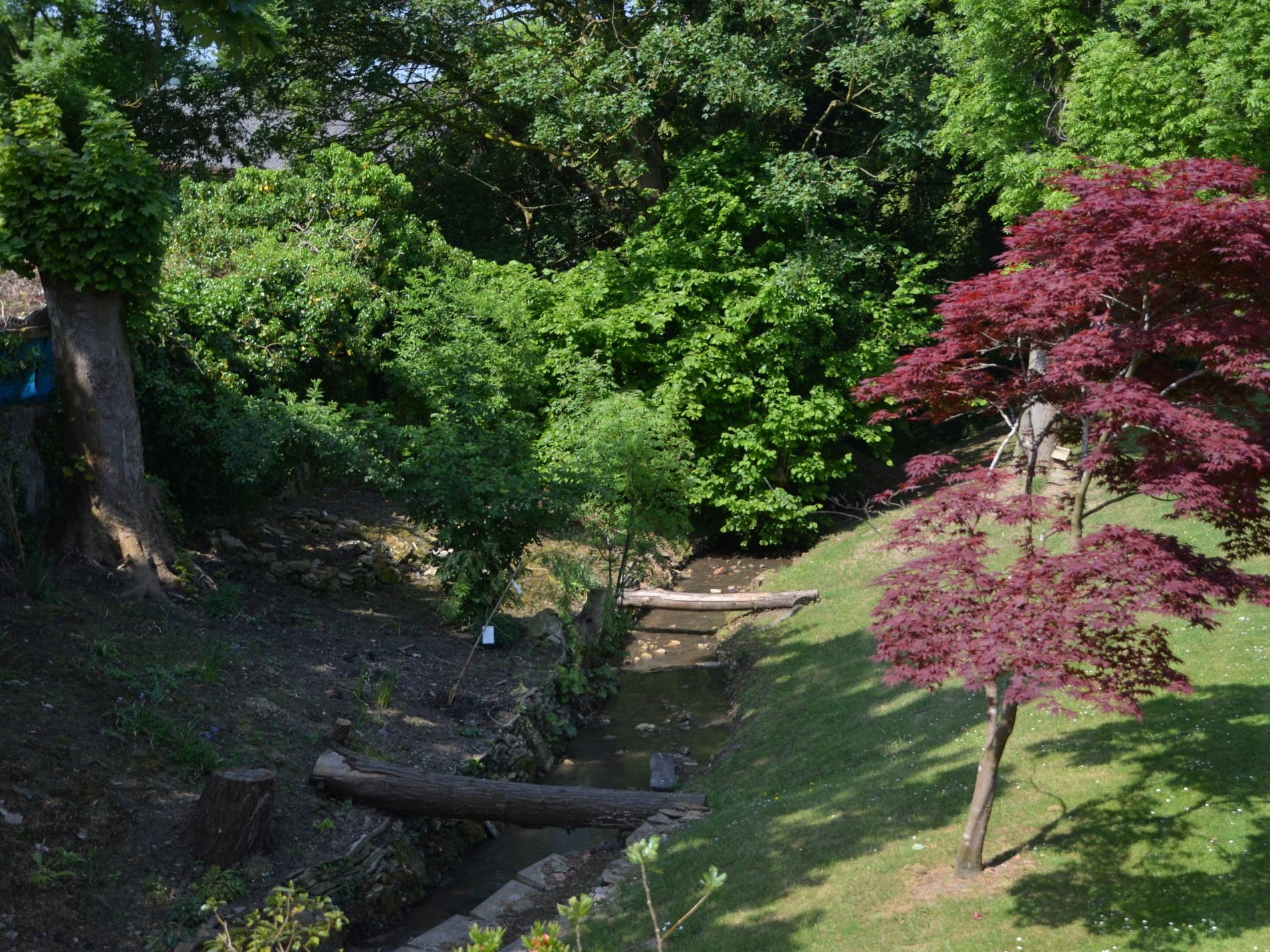 Views of the stream at the end of the garden
