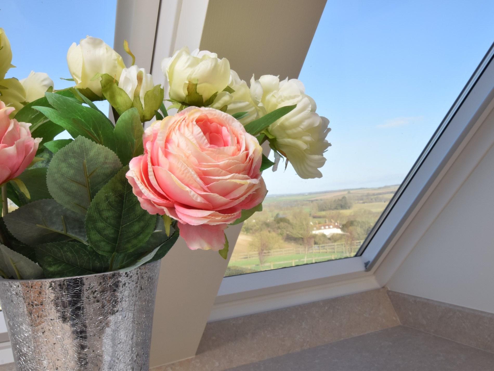 Views from kitchen window