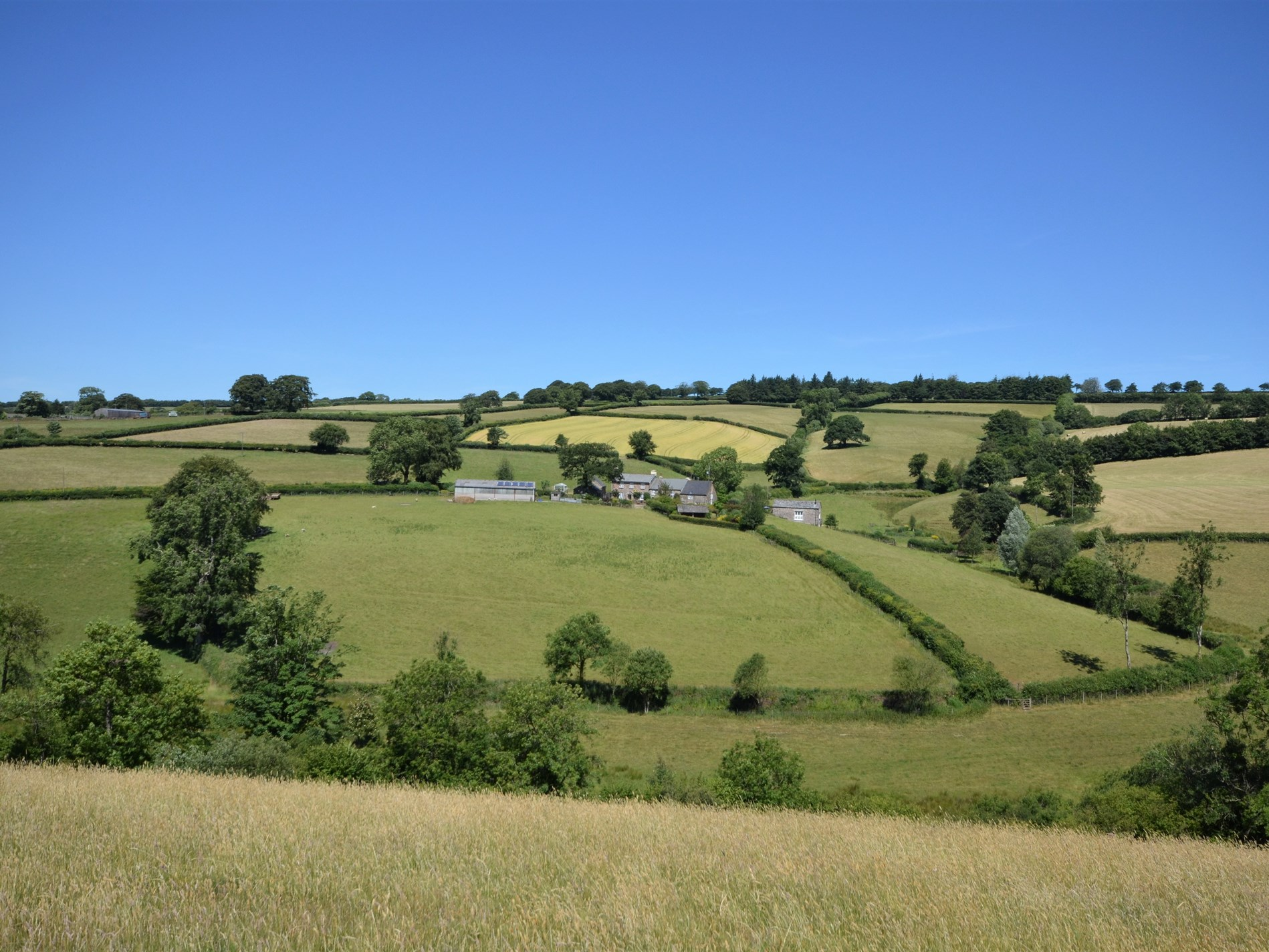 Stay in the wonderful barn conversion surrounded by countryside