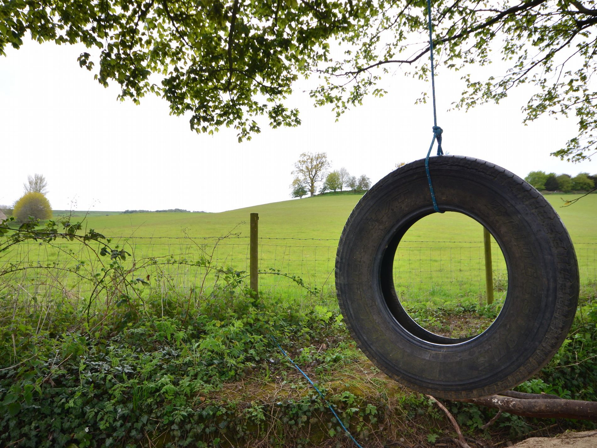 Fun for big kids and little ones, with countryside views
