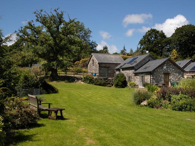 A beautiful spacious garden for you to enjoy