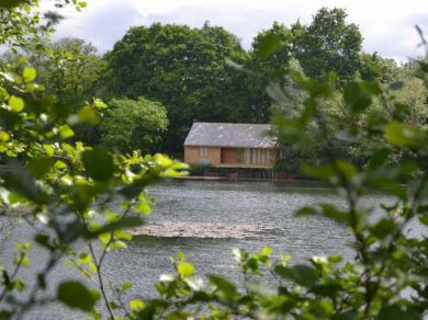 Water Lily Lodge (44795)