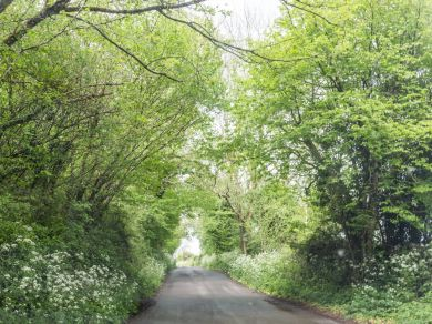 Long View - Somerset (00452)
