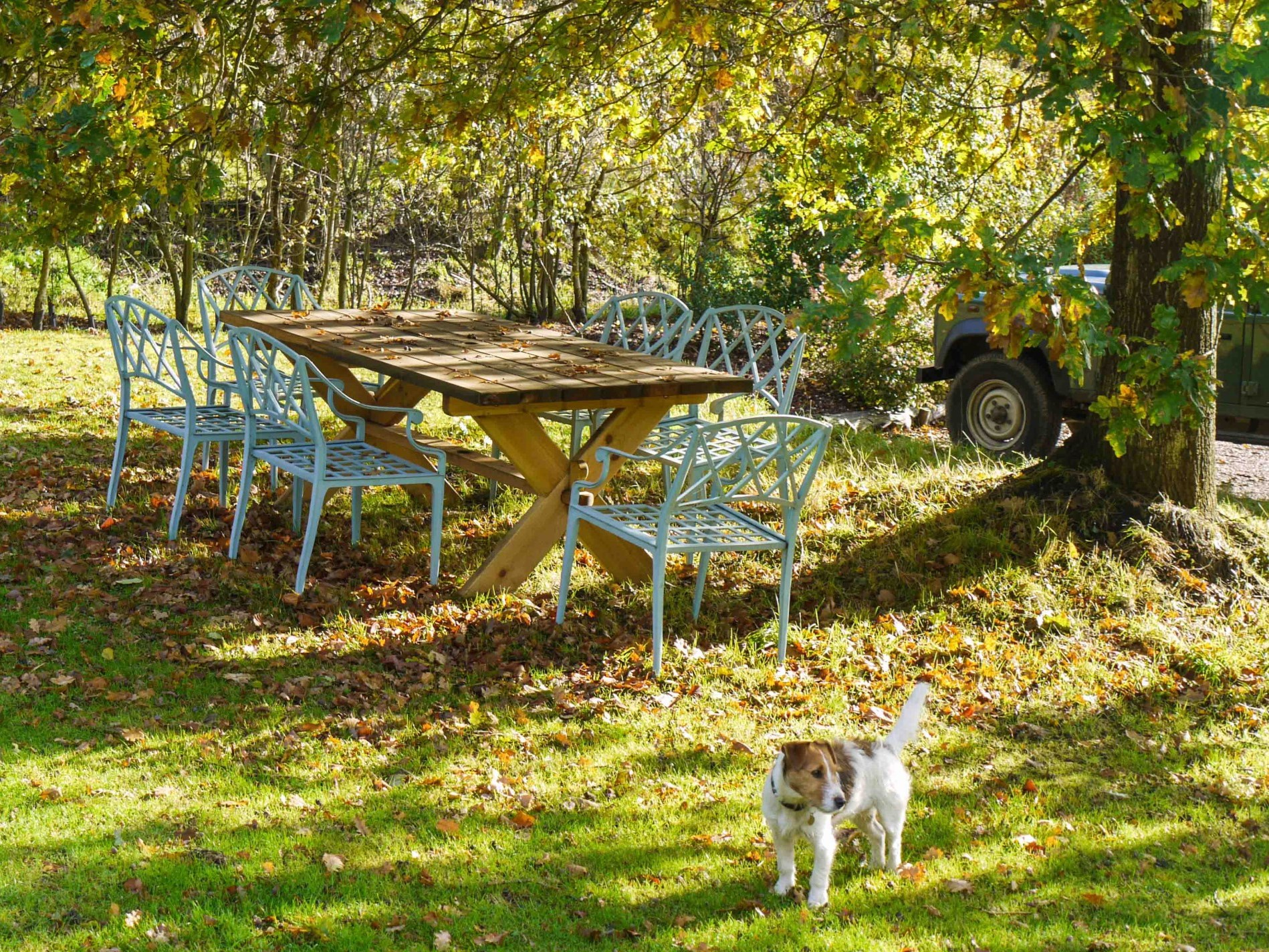 Alfresco dining in the surrounding grounds