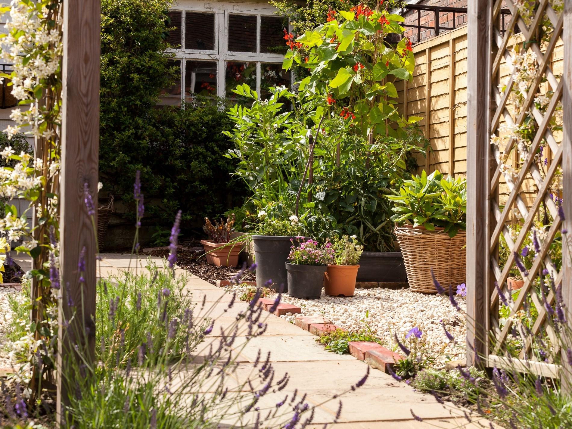 Beautifully designed garden
