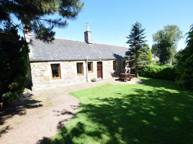 Blue Spruce Cottage (53898)