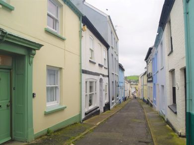 Quay Cottage In Appledore (53994)