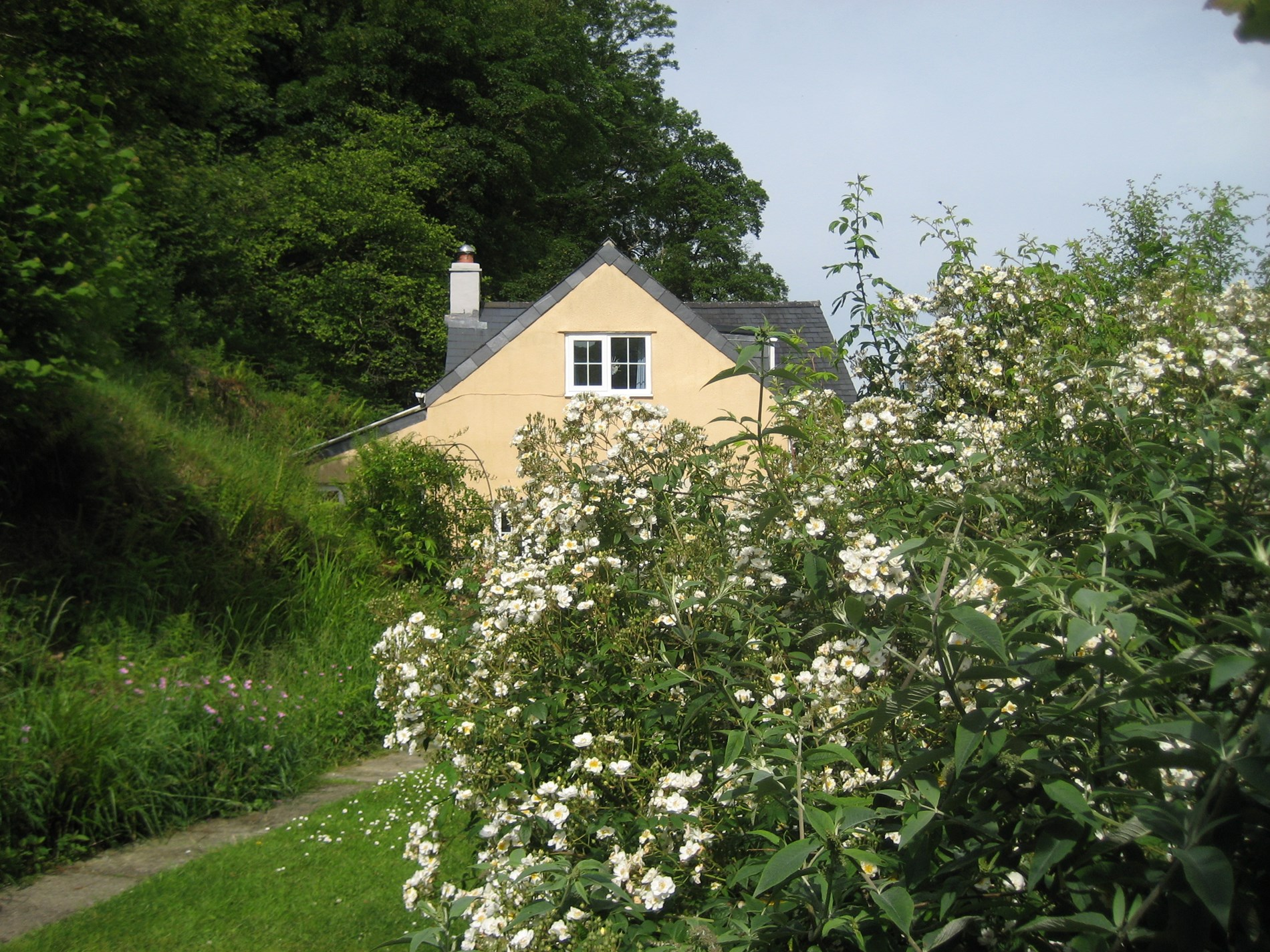 2 Bedroom Cottage in Fishguard, Mid Wales
