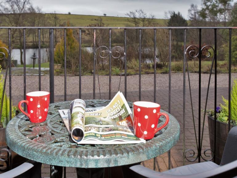 Morning coffee watching the wildlife