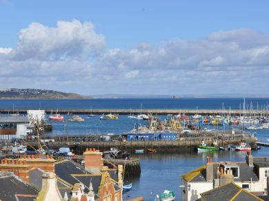 Harbour View Cottage - Brixham (BX037)