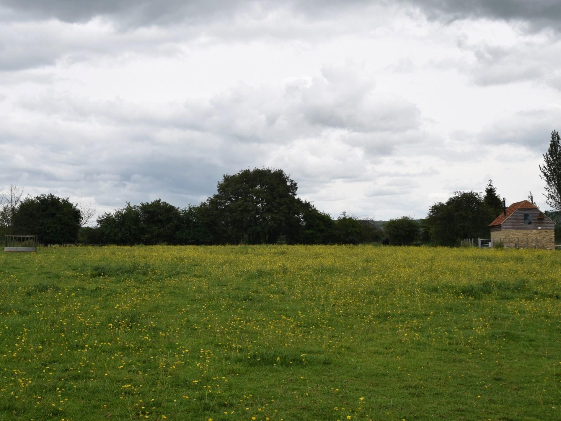 An idyllic rural position
