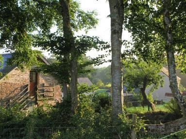 The Tall Barn (55958)