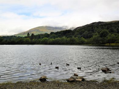 The Dairy - Lake District (LCC59)