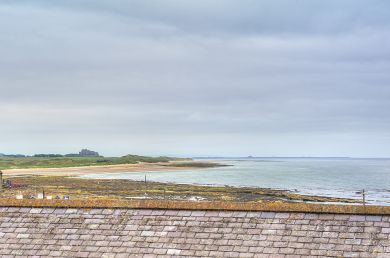 Seascape - Seahouses (CN166)