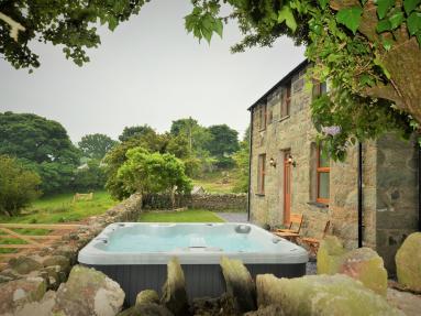 Welsh Mountain Farmhouse (59586)