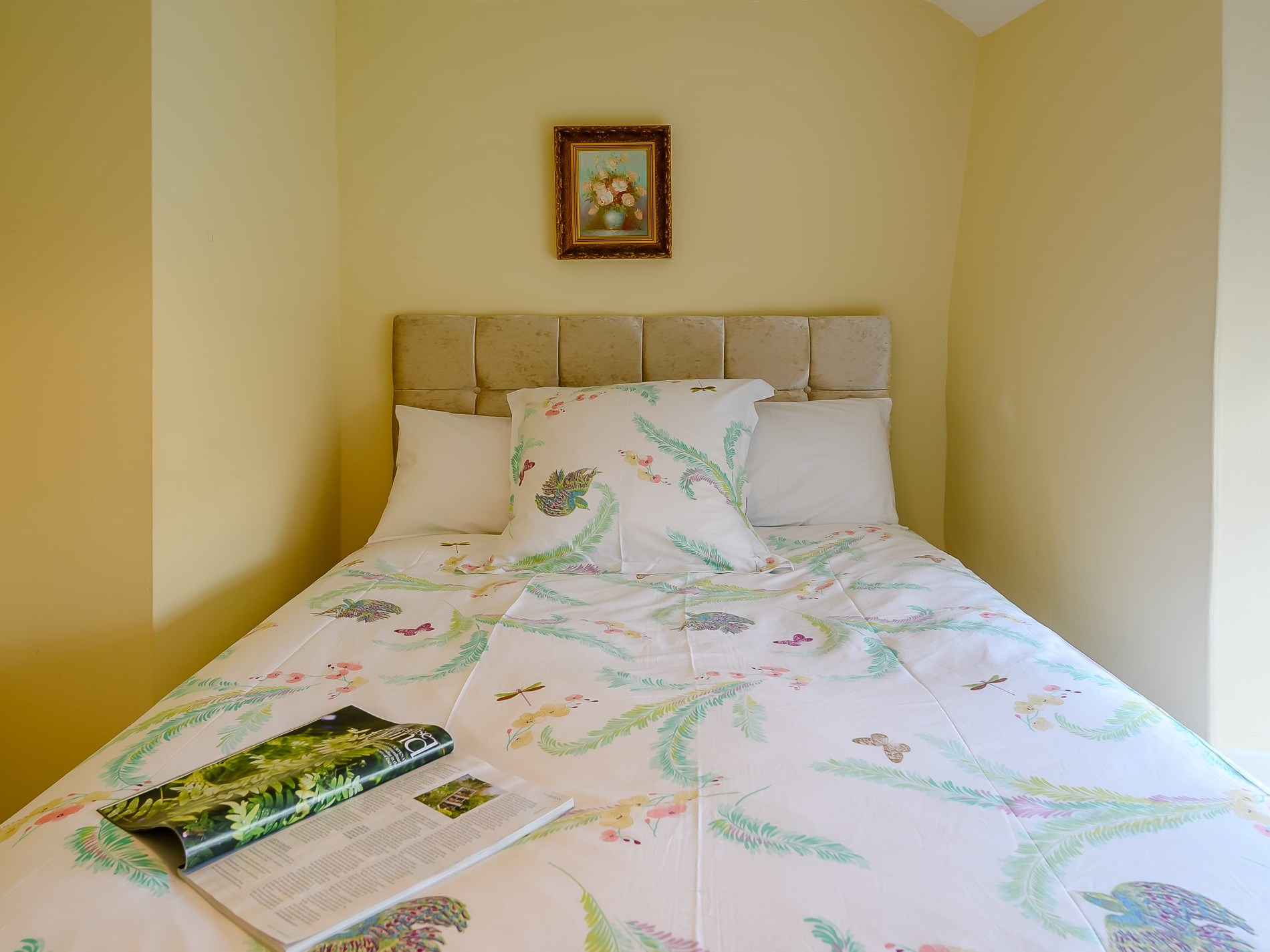 2 Bedroom Cottage in South Molton, Devon