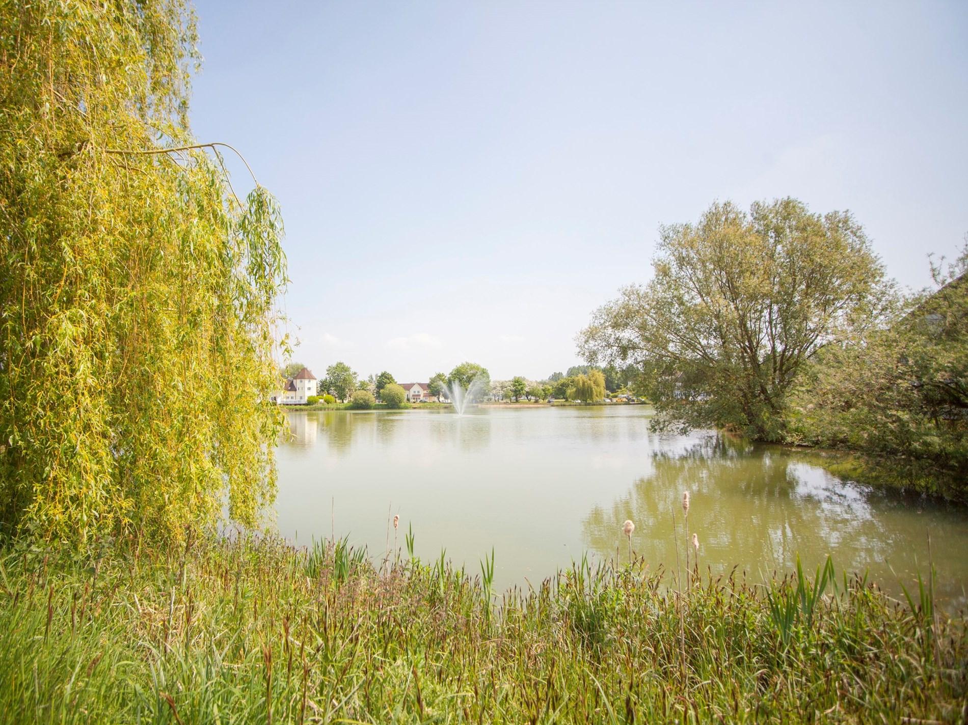 Enjoy wonderful walks around the lakes
