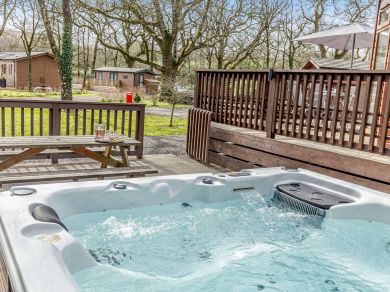Dartmoor Lodge (06199)