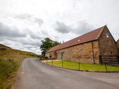 Pheasant Cottage - Chopgate (G0110)