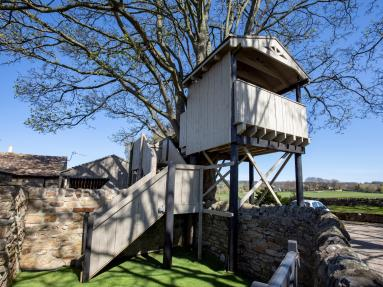The Treehouse (G0165)