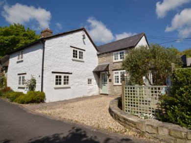 Olive Tree Cottage - Portesham (74181)