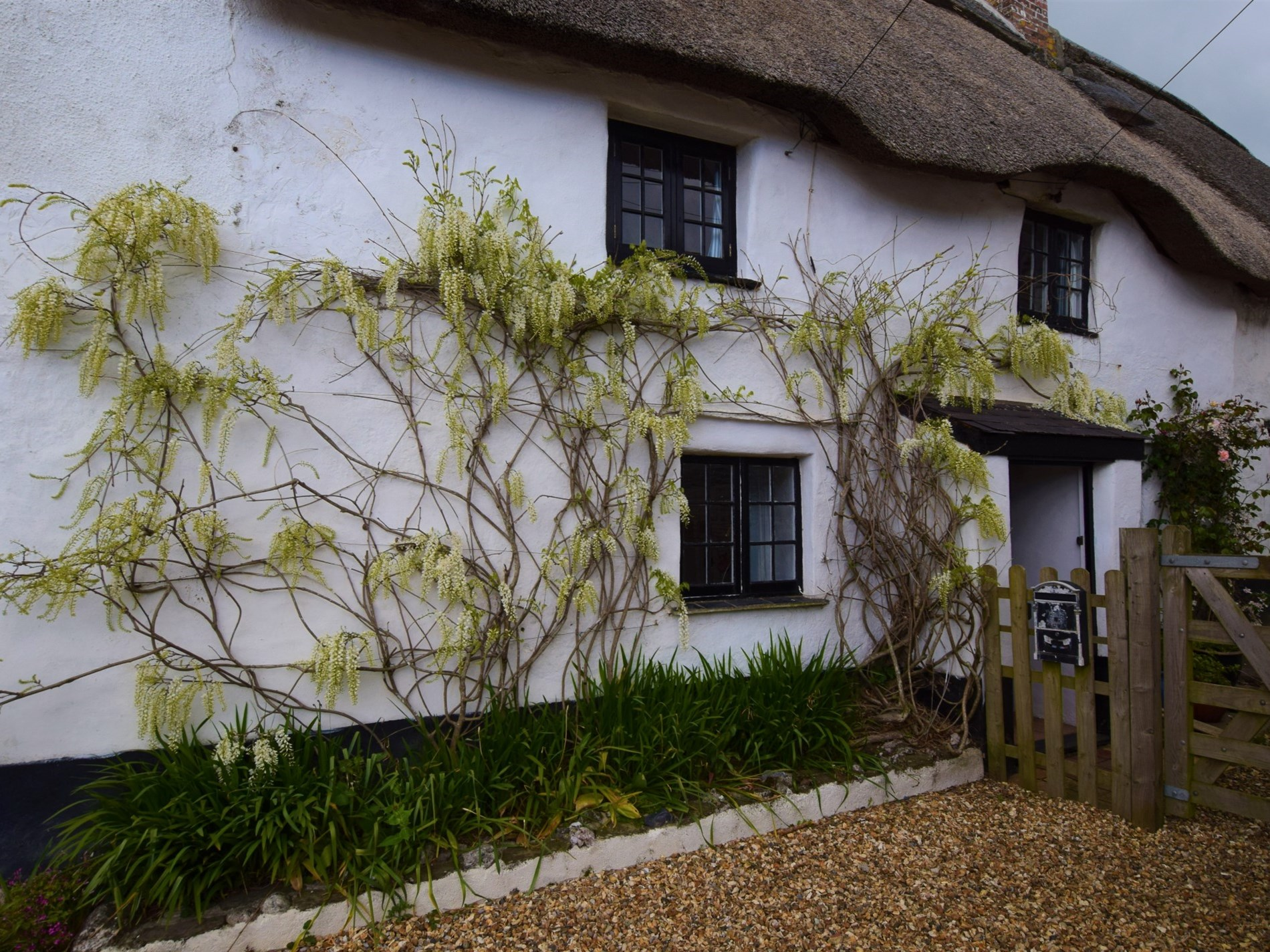 View towards the delightful thatch cottage
