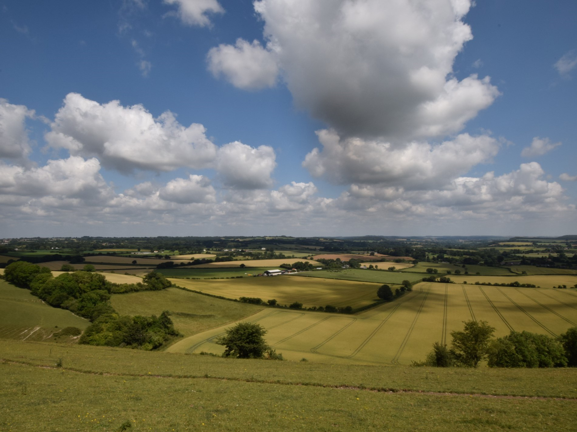 Take a trip to nearby Cranborne Chase and admire the incredible scenery