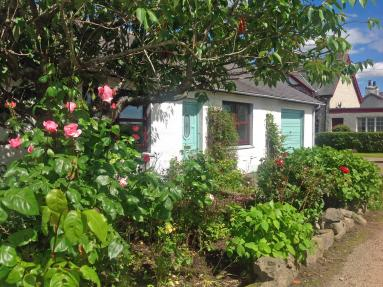 Rose Cottage - Culrain (CA284)