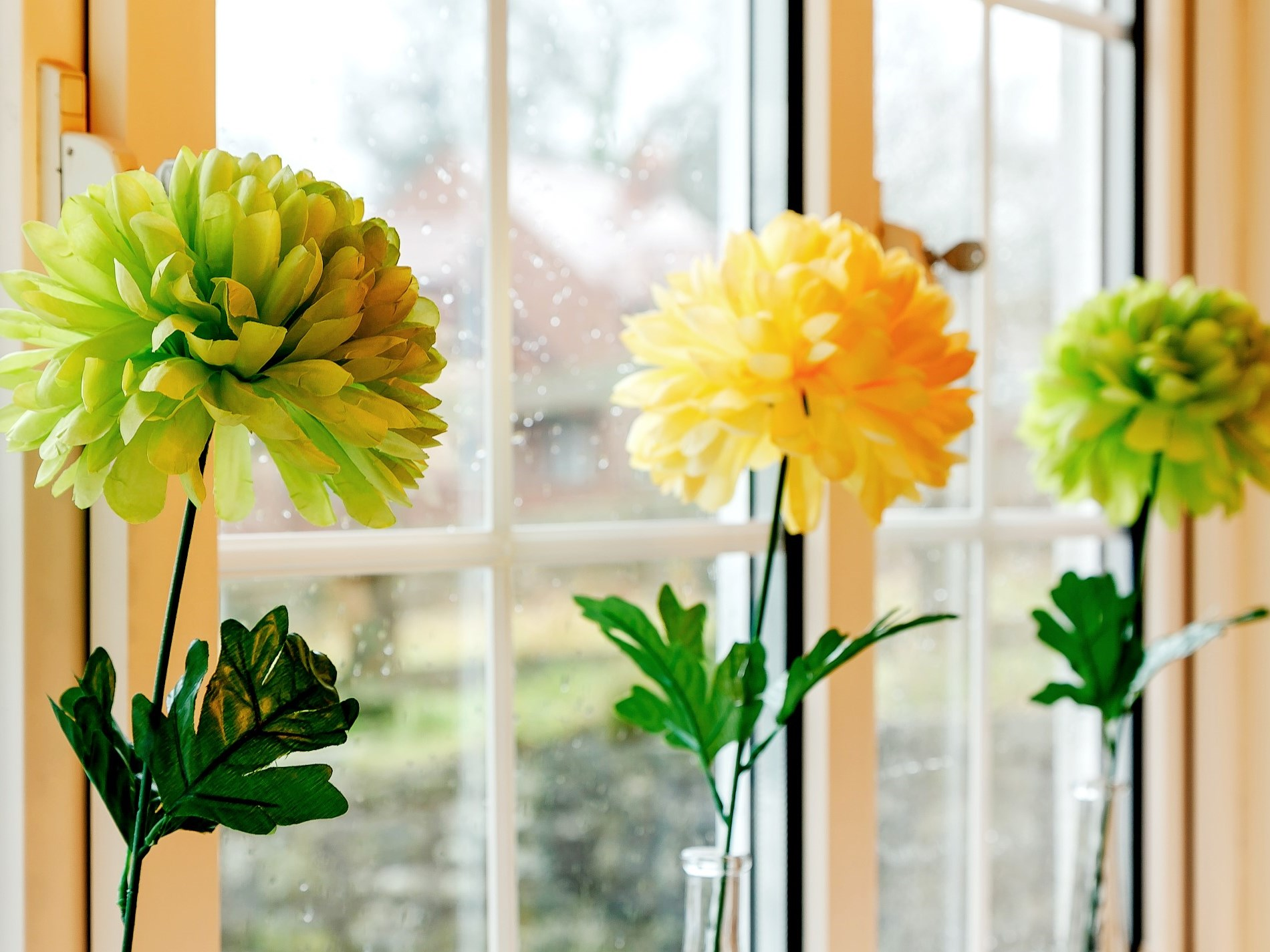 Splashes of colour throughout the property