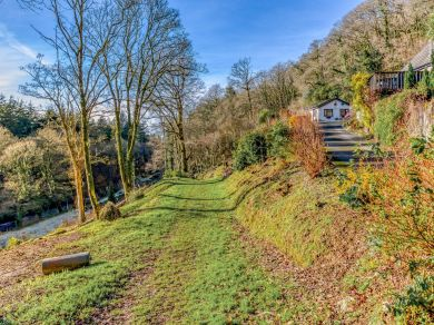 Woodlands Cottage - Cornwall (77914)
