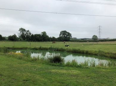 The Badger At Badger Brook (78581)