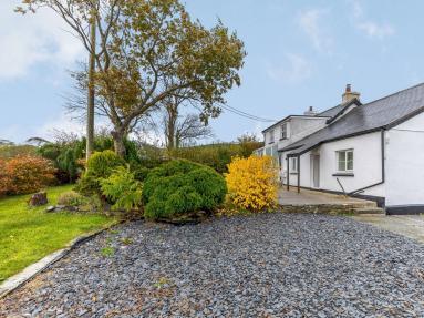 Bryn Rhoysn Snowdonia (78601)