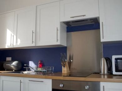 Tommy Jacks Apartment 5 (78612)