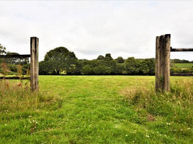Chestnut Cottage - Cornwall (78621)