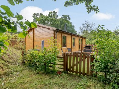 Alverstone Ponds Willow End Lodge (78634)