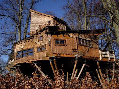 Tom's Cottage - Alnwick (78792)