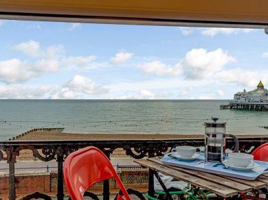 Skipper's View (79302)