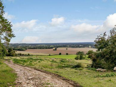 Weald View (79421)
