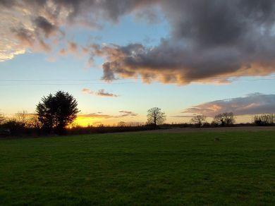 Willow Barns (79558)