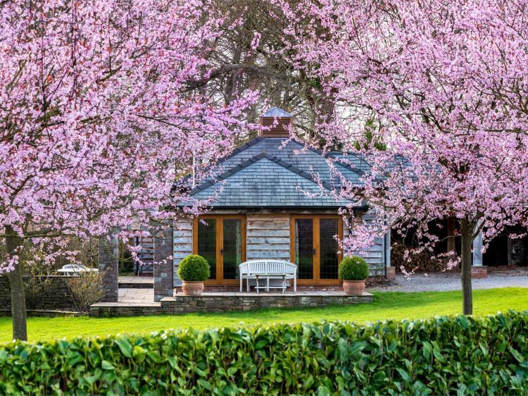 Holly Lodge - Bettws Newydd (BN197)