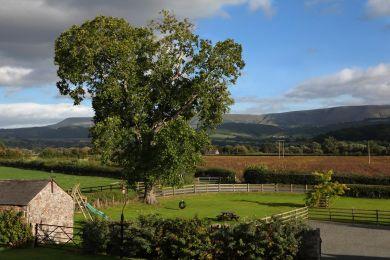 Yew Tree Barn - Llyswen (BN370)