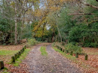 Little Brenchley (80475)