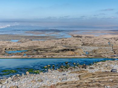 Ocean Charm - Westward Ho! (80702)