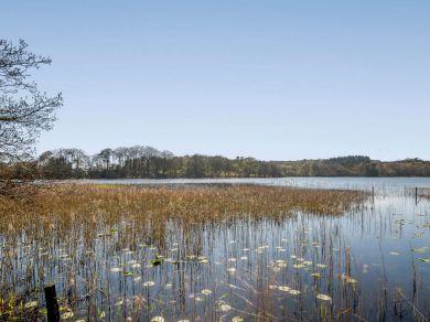 Loch View - Colvend (81129)